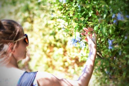 Woman Holding Plant Leaf