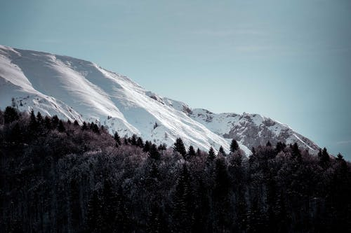 Kostenloses Stock Foto zu außerorts, bäume, berg, draußen
