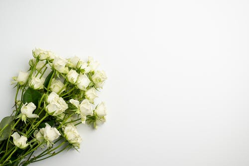 Fresh flowers placed on white table