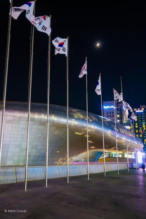 Ilmainen kuvapankkikuva tunnisteilla dongdaemun-aukio, soul, etelä-korea