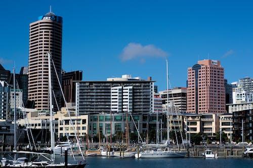 Free stock photo of cityscape