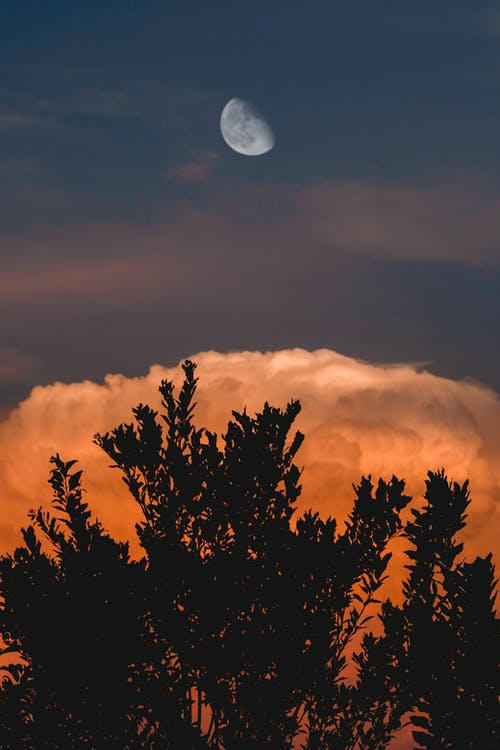 Dark sky with moon and cloud