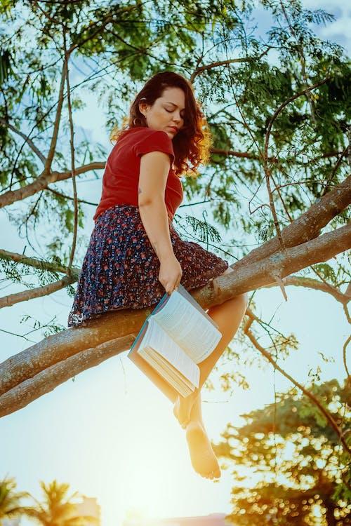 Foto d'estoc gratuïta de a l'aire lliure, adult, arbre, capvespre