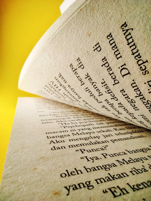 Free stock photo of book pages, open book