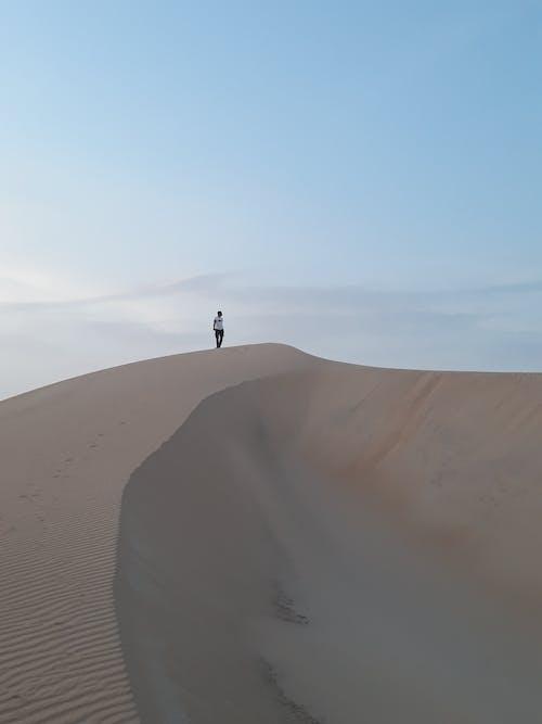 Anonymous tourist admire nature in sandy desert
