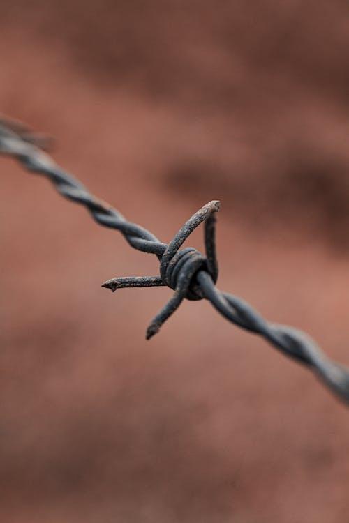 Бесплатное стоковое фото с барьер, безопасность, боль