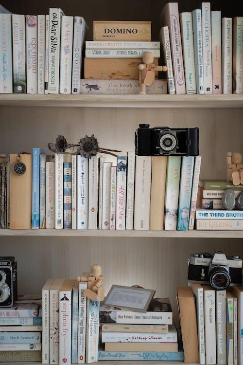 Безкоштовне стокове фото на тему «vintage камер, Вітальня, домашній декор, книги»