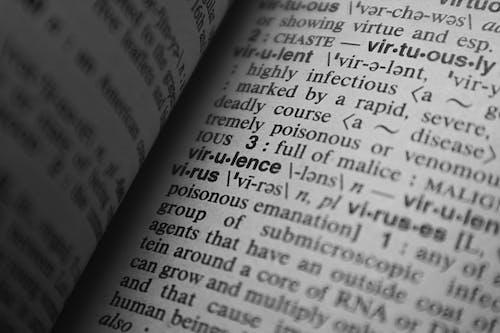 Parole Nel Dizionario
