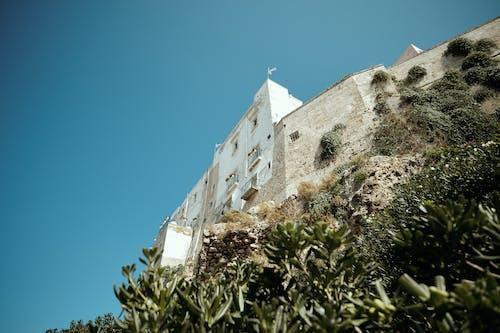 Free stock photo of bari, blue, building