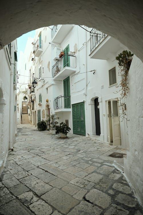 Foto profissional grátis de acordo, alameda, alojamento, antigo