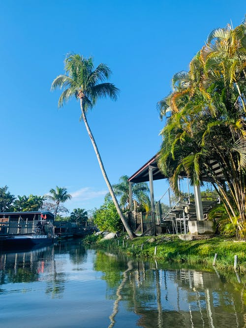 Exotic resort with green palm and terraces on riverside