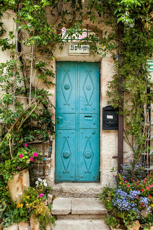 Vintage metal door of weathered house decorated with green plants and blooming flowers