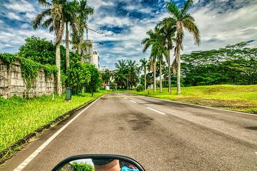Kostnadsfri bild av asfalt, gata, gräs, himmel