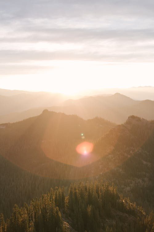 Mountains and Trees during Sunrise