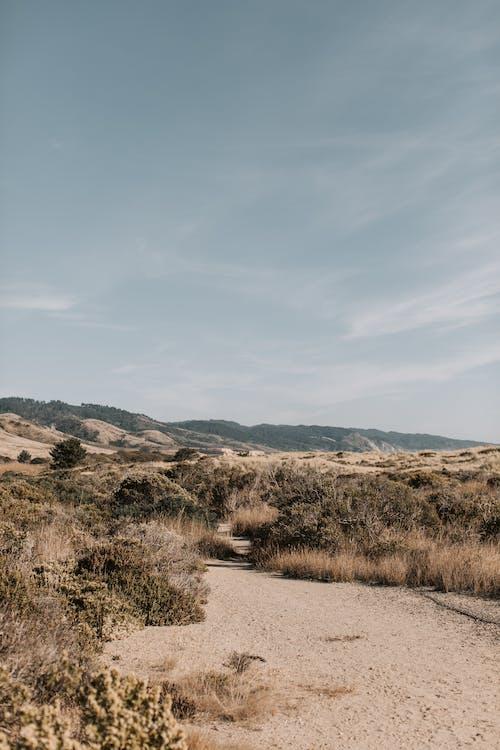 Základová fotografie zdarma na téma 4k, cestování, duna, hora