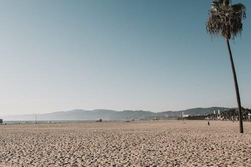 加州, 地平線, 夏天, 夏季 的 免費圖庫相片