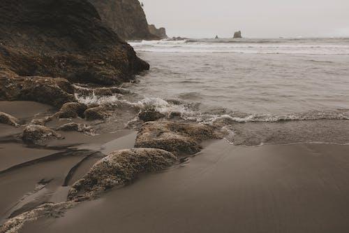 Immagine gratuita di acqua, bagnasciuga, esterno, l'oceano pacifico
