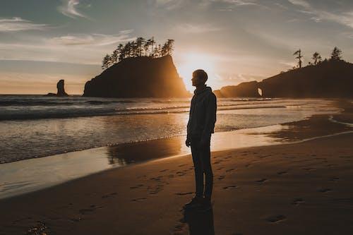 Photos gratuites de aube, bord de mer, contemplant, contempler