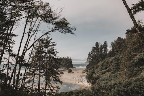 강, 경치, 경치가 좋은, 계절의 무료 스톡 사진