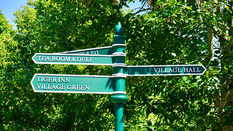 Безкоштовне стокове фото на тему «великий план, дерева, заводи, знак»