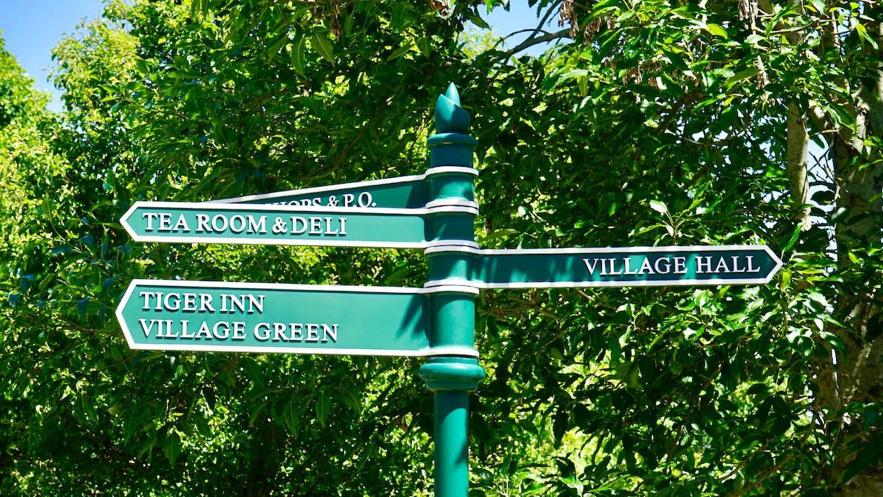 Green Road Sign Near Tree