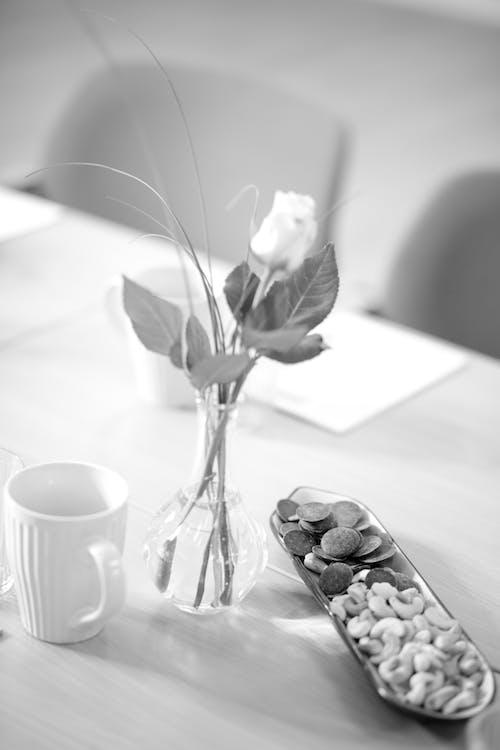Kostenloses Stock Foto zu aroma, aromatisch, becher