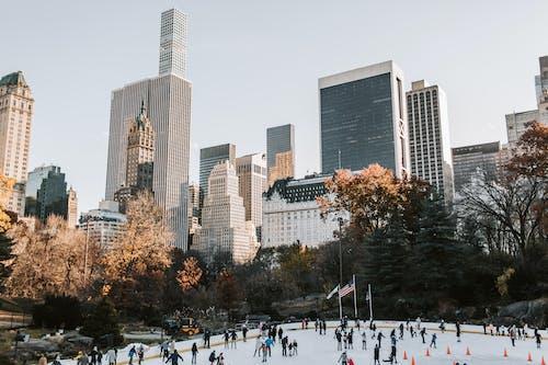 skyscapers, 公園, 冬季 的 免費圖庫相片