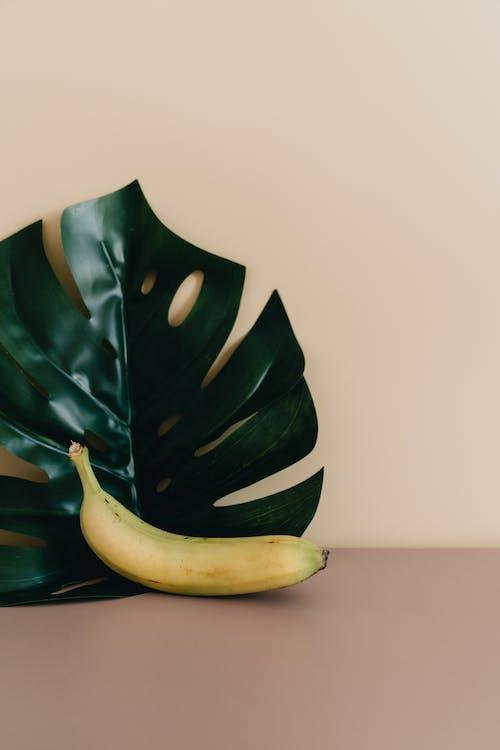 Foto profissional grátis de abstrair, abstrato, alimento