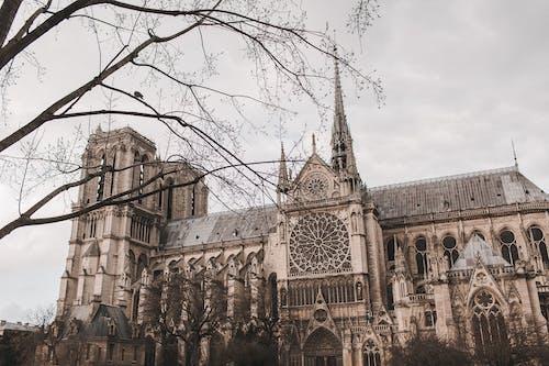 Бесплатное стоковое фото с архитектура, башня, город