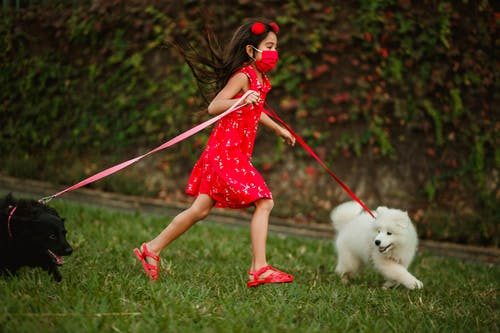 Photo of Girl Running With Her Dogs on Grass Field