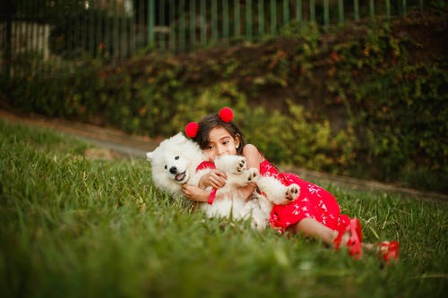 Cheerful girl lying on lawn and cuddling cute fluffy puppy while enjoying weekend together in park