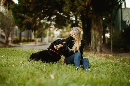 Woman caressing dog on lawn