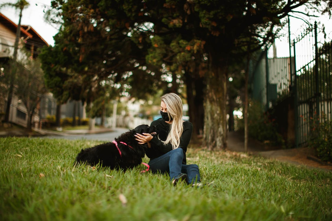 Tranquil female in protective mask caressing friendly fluffy dog while sitting on green grass during coronavirus epidemic