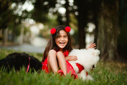 Delighted girl with cute dogs in park