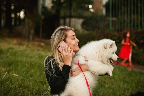 Photos gratuites de affection, amour, amusement, canin