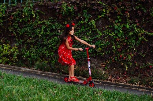 Ảnh lưu trữ miễn phí về cây, cỏ, con gái, công viên