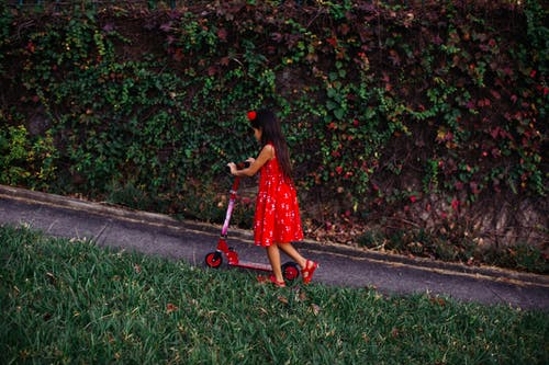 Ảnh lưu trữ miễn phí về cây, Chân dung, cỏ, con gái