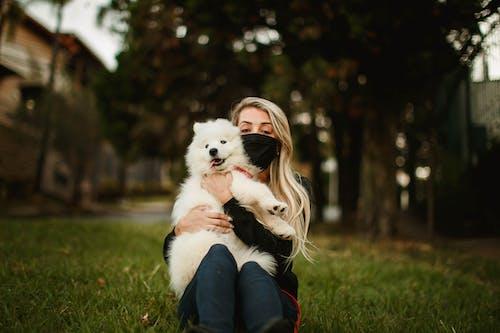 Foto d'estoc gratuïta de a l'aire lliure, amistat, amor, animal
