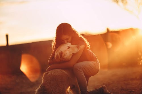 Young woman hugging and kissing golden retriever dog in open air at sunset