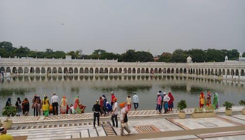 Free stock photo of religion, Sikh