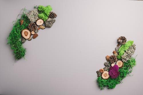 Gratis arkivbilde med ball, blomst, bryllup, dekorasjon
