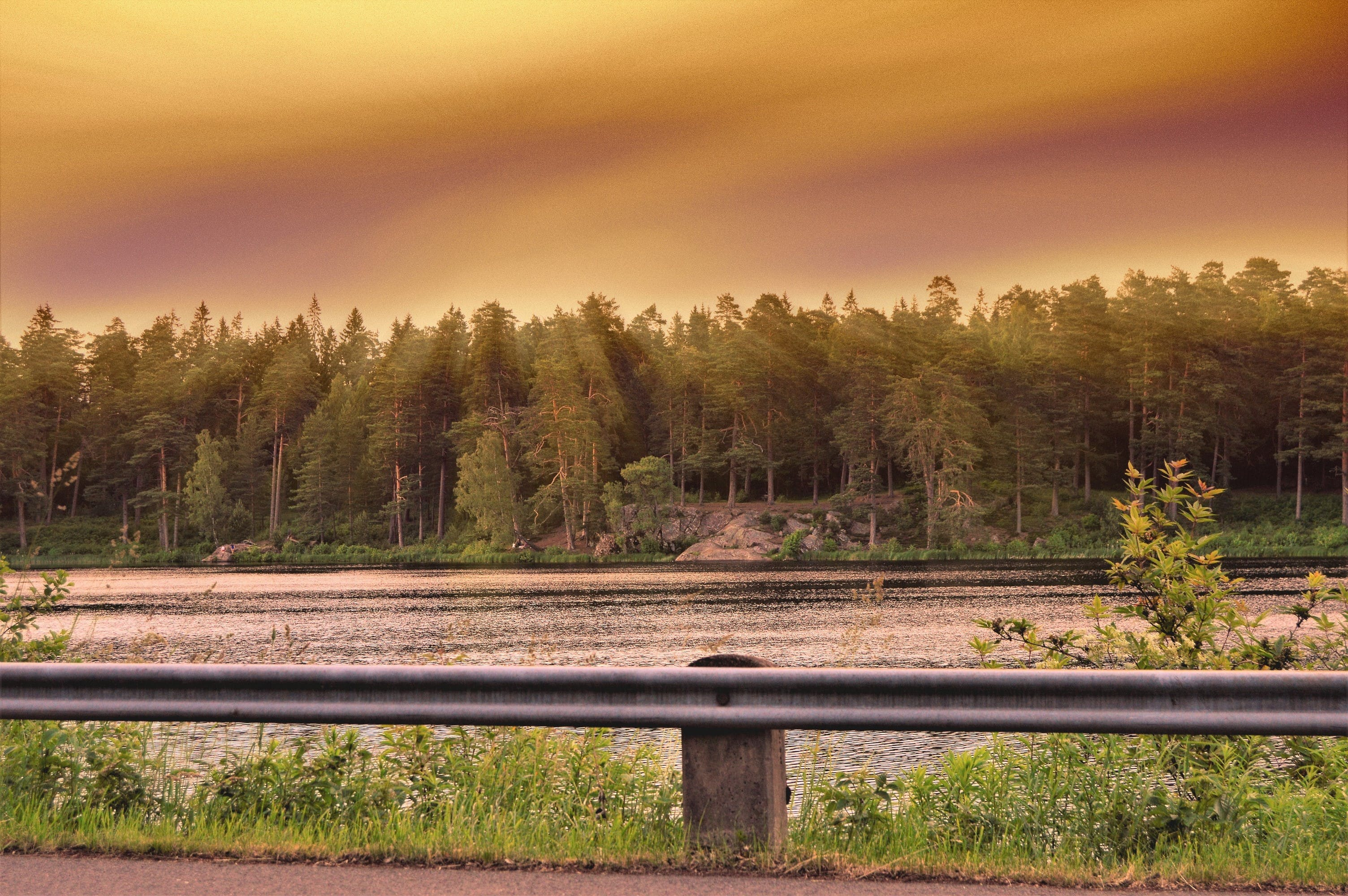 Free stock photo of road, nature, sunset, water