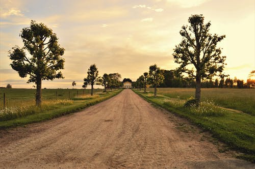 Free stock photo of cloudy, dirt road, nature