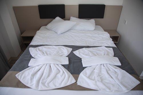 가구, 가족, 깨끗한, 담요의 무료 스톡 사진
