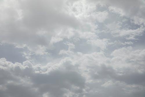 계절, 구름, 깨끗한, 높은의 무료 스톡 사진