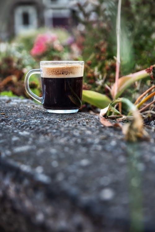 Δωρεάν στοκ φωτογραφιών με background, cafe, lifestyle