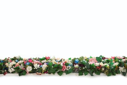 Free stock photo of artificial, background, beautiful, beautiful flowers