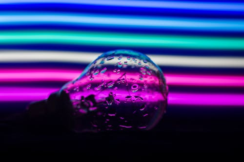 Free stock photo of bulb, life at home, lockdown, love
