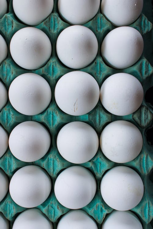 Set of eggs placed in container