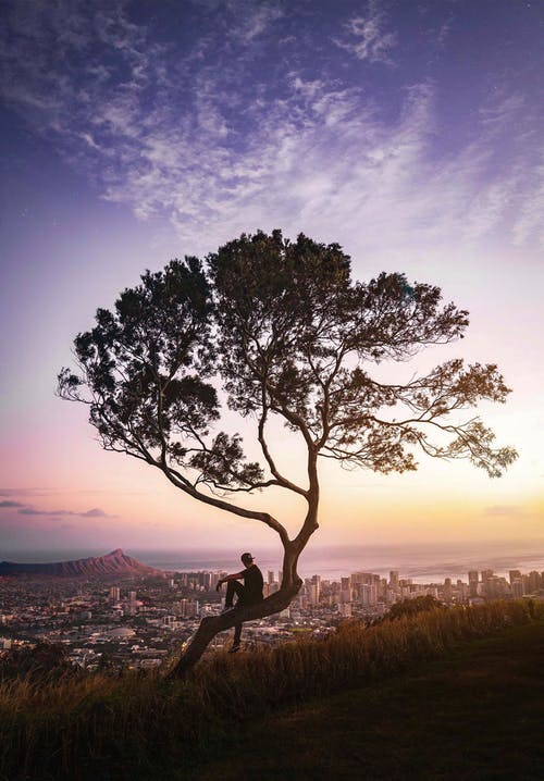 Foto profissional grátis de #desafioaoarlivre, #outdoorchallenge, adobe, Adobe Photoshop